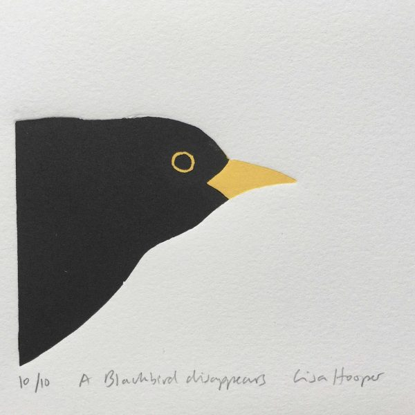 Hooper Blackbird