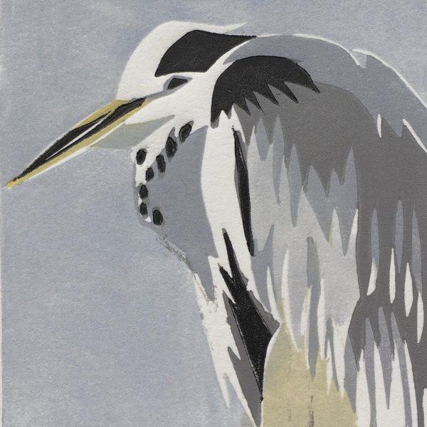 Hooper Heron