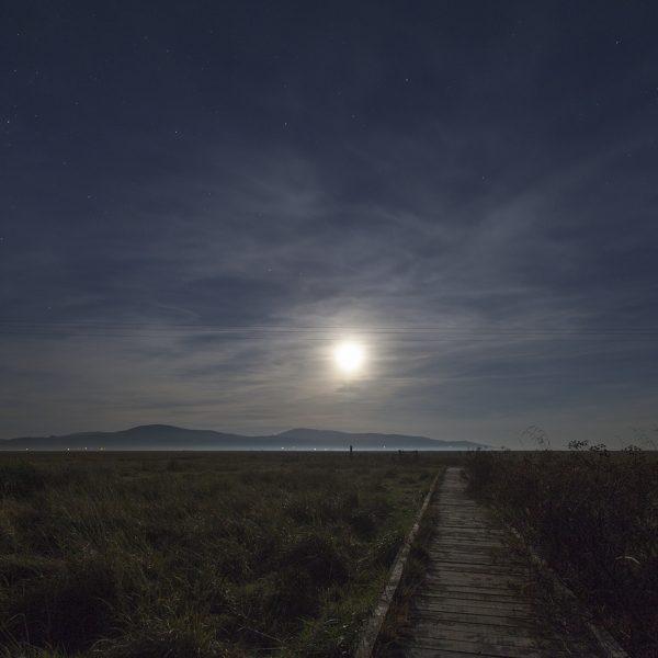 Salt marshes after dark, Wigtown