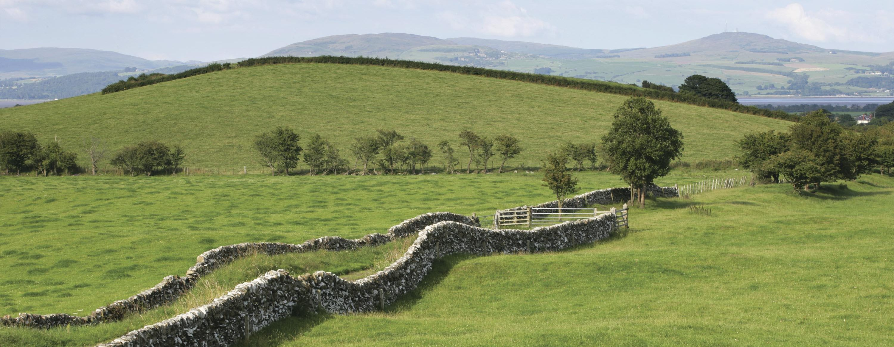 Galloway landscape - dry stane wall, hills and pasture